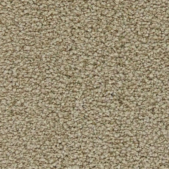 Queens Road Bridgewater Tan Carpet Zoom Close Up