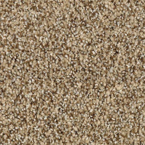 Lavish Conclusion Ashwood Carpet